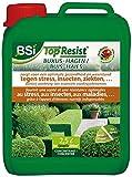 BSI Top Resist Engrais fertilisant pour Buis/Haie 2,5 L