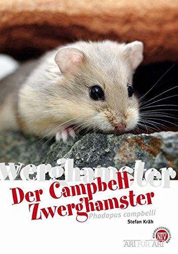 Campbell-Zwerghamster: Phodopus campbelli (Art für Art / Kleinsäuger)