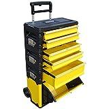 ASS Profi - Caja de herramientas con ruedas (acero, 5 compartimentos y caja con tapa, muy resistente)