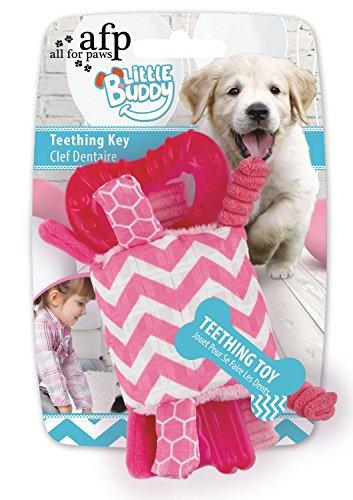 All for Paws Little Buddy - Teething Key Rosa (Buddy Kühlschrank)