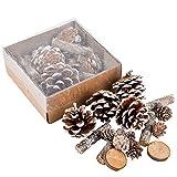 Dadeldo Living & Lifestyle Bastel Set Xmas Natur 16er Deko 2-5-8cm braun Weihnachten