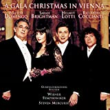 A Gala Christmas in Vienna [Import USA]