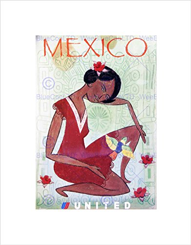 travel-mexico-united-airline-bird-vintage-advert-framed-art-print-b12x1628