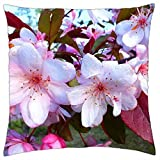 Spring. flores crateagus - Throw Pillow Cover Case (18