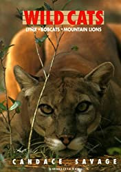 Wild Cats: Lynx, Bobcats, Mountain Lions