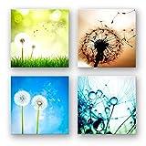 Pusteblume Set A schwebend, 4-teiliges Blumen Bilder-Set jedes Teil 29x29cm, Seidenmatte Optik auf Forex Fine Art, moderne Optik, UV-stabil, wasserfest, Kunstdruck für Büro, Wohnzimmer, XXL Deko Bild