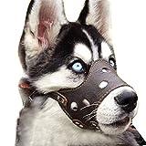 Kwan Verstellbar Hund Maulkorb Leder für Kleine Medium Große Hunde, L, Braun