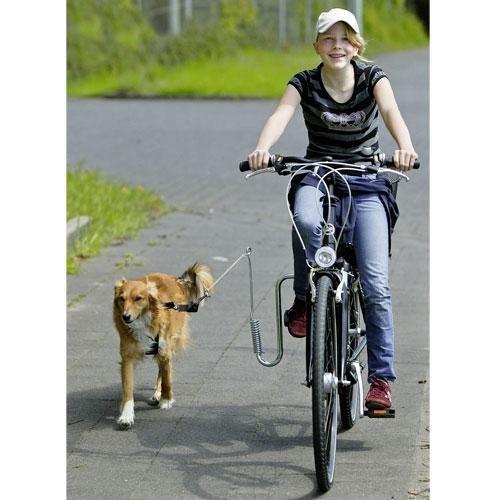 Karlie Doggy Guide Führhalter für Fahrräder, Fahrradleine, Abstandshalter