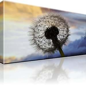 bilder l wenzahn blume bild auf leinwand 1 teilig 100x55 cm k che haushalt. Black Bedroom Furniture Sets. Home Design Ideas