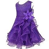 iiniim Baby Mädchen Kleid Prinzessin Kleid Blumenmädchenkleid Festlich Hochzeit Kleid Kleinkind Taufkleid Partykleid Festzug Lila 86-92/18-24 Monate
