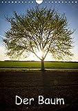 Der Baum (Wandkalender 2019 DIN A4 hoch): Bäume in verschiedenen Bildern (Monatskalender, 14 Seiten ) (CALVENDO Natur)