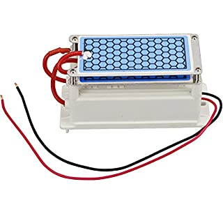 Portable Ceramic Ozone Generator 220V 10g/5g Integrated Ceramic Plate Ozonizer Air and Water Purifier (10g/two layers)