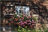 Posterlounge Alu Dibond 150 x 100 cm: House in Gerstruben Near Oberstdorf, Allgau, Bavaria, Germany, Europe von Hans-Peter Merten/Robert Harding