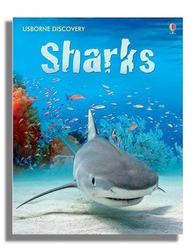Sharks (Usborne Discovery) di Jonathan Shiekh-Miller