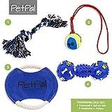 Hundespielzeug Set von PetPäl | DAS Perfekte Hunde Spielzeug mit Ball am Seil, Frisbee, Quietscher & Knotenseil für den Hund Groß & Klein | Auch für Welpen Geeignet