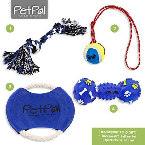 Hundespielzeug Set von PetPäl | DAS Perfekte Hunde Spielzeug mit Ball am Seil, Frisbee, Quietscher & Knotenseil für den Hund Groß & Klein | Auch für Welpen Geeignet (Ball In Einem Ball Hund Spielzeug)