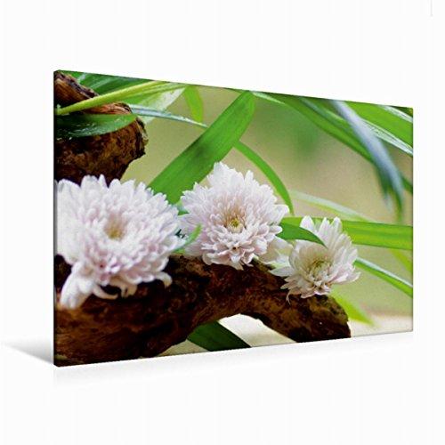 Calvendo Premium Textil-Leinwand 120 cm x 80 cm quer zarten Blüten | Wandbild, Bild auf Keilrahmen, Fertigbild auf echter Leinwand, Leinwanddruck Gesundheit Gesundheit