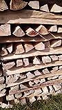 TNNature 30kg getrocknetes Feuerholz| Brennholz aus Buche | Holz aus nachhaltiger Forstwirtschaft | sofort einsetzbar (33cm)