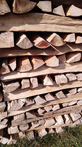 TNNature 30kg getrocknetes Feuerholz| Brennholz aus Buche | Holz aus nachhaltiger deutscher Forstwirtschaft | sofort einsetzbar (25cm)