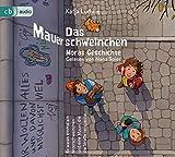 Das Mauerschweinchen - Noras Geschichte / Arons Geschichte - Katja Ludwig