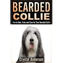 Bearded Collie: How to Own, Train and Care for Your Bearded Collie (English Edition)