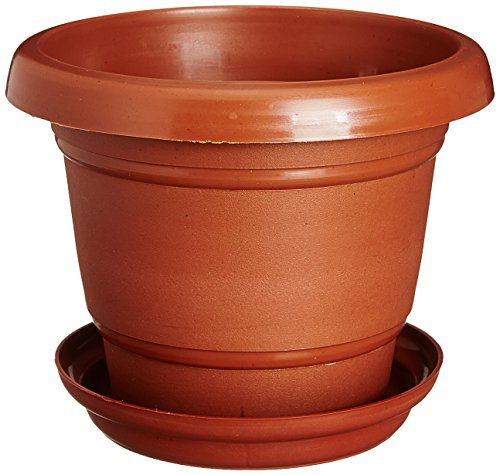 Easy Gardening Size 6 Gardening Pots + Trays - Terracotta Color Planter...