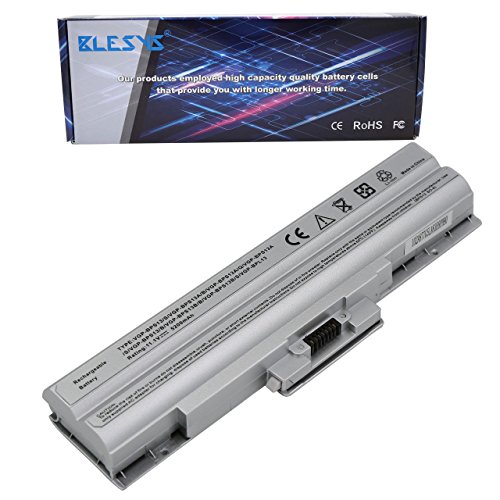 BLESYS Batteria VGP-BPS13 VGP-BPS13AB VGP-BPS13B VGP-BPS13AS VGP-BPS13S VGP-BPL13 VGP-BPS21 VGP-BPS21A VGP-BPS21B Sostituzione della batteria del laptop SONY VAIO FW SR Serie(6Cells Silver)
