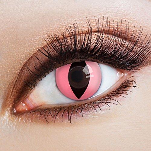 �� Katzenaugen deckend pink – farbige Kontaktlinsen ohne Stärke – bunte Augenlinsen für Halloween & Karneval, 12 Monatslinsen für Cosplay (Wilde Kontaktlinsen)