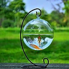 Round Shape Hanging Glass Aquarium Fish Bowl Fish Tank Flower Plant Vase Home Decoration with 12cm Height Rack Holder