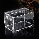 Acrilico Trasparente Di Animali Rettile Box Allevamento Serbatoi Container Per Lizard Chameleon Spider Snake Altri Rettili (30x20x15cm)