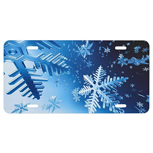 Ice Crystals License Plate -
