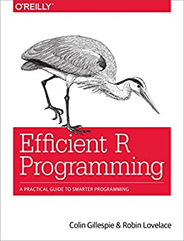 Efficient R Programming: A Practical Guide to Smarter Programming eBook: Colin Gillespie, Robin Lovelace