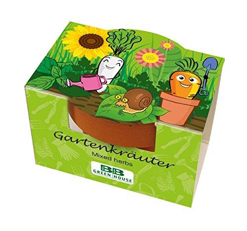 Mini Pflanzset Gartenkräuter
