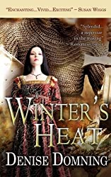 Winter's Heat by Denise Domning (2014-02-11)