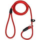 DIGIFLEX Langlebige und Rutschfeste Trainings - Hundeleine in Rot mit Verstellbarem Halsband aus Nylon und Baumwolle