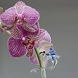 Orchideenstab Blumenstab Blumenhalter mit Schnecke handgeformt Lauschaer Glas das Original
