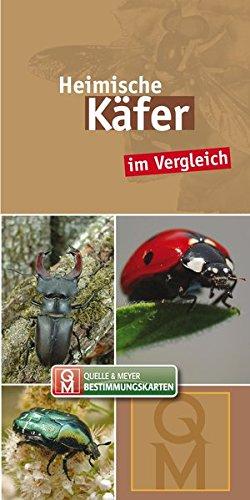 Heimische Käfer: im Vergleich (Quelle & Meyer Bestimmungskarten)
