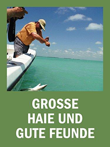 Große Haie und gute Freunde (Key West Tauchen)