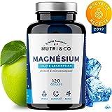 Magnesium Végétal + Vitamine B6 Bio-Active | Malate & Liposome de Magnésium | Absorption Supérieure au Bisglycinate & Haute Teneur (300 mg de Mag Élément/Jour) | 120 Gélules Made in France | Nutri&Co