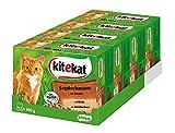 Kitekat Katzenfutter Nassfutter Jagdschmaus in Sauce, 48 Portionsbeutel (4 x 12 x 100g)