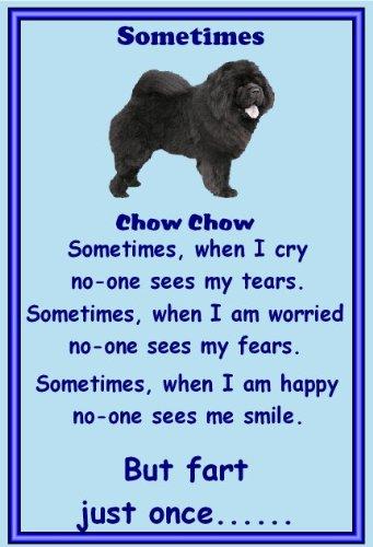 chow-chow-nero-novita-dog-calamite-da-frigo-sometimes