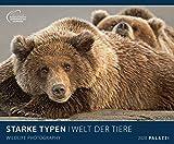 STARKE TYPEN 2020: WELT DER TIERE - lustige Tier-Motive - Bildkalender 60 x 50 cm Kalender...