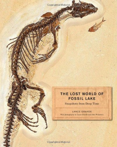 The Lost World of Fossil Lake – Snapshots from Deep Time