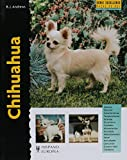 Chihuahua (Excellence)