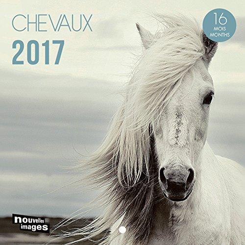 nuove-immagini-calendario-2017-cavalli-16-mesi-145-x-145-cm
