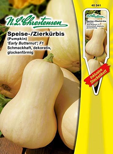 N.L. Chrestensen 40341 Speise -/Zierkürbis Early Butter Nut F1 (Speise- /Zierkürbissamen)