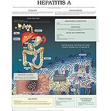 Hepatitis A e chart: Full illustrated (English Edition)