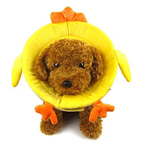 Alfie Pet by Petoga Couture Fellpflege-Logan Halsband Soft Recovery (für Hunde und Katzen)-Farbe Gelb, Medium, Gelb