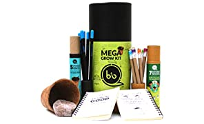 bioQ Eco Friendly Mega Grow Kit | Coco Pot, Coco Peat, Plantable Mini Notepad & Stationery | Recycled Paper Packaging |for Adults| Grow Plants from Stationery