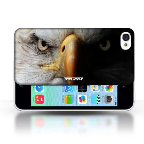 Kobalt Lupo stampato Custodia Cover per Apple iPhone 5C cellulari telefoni / Collezione Animali selvatici Eagle/uccello rapace